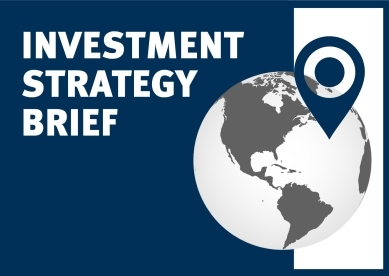 Investment Strategy Brief